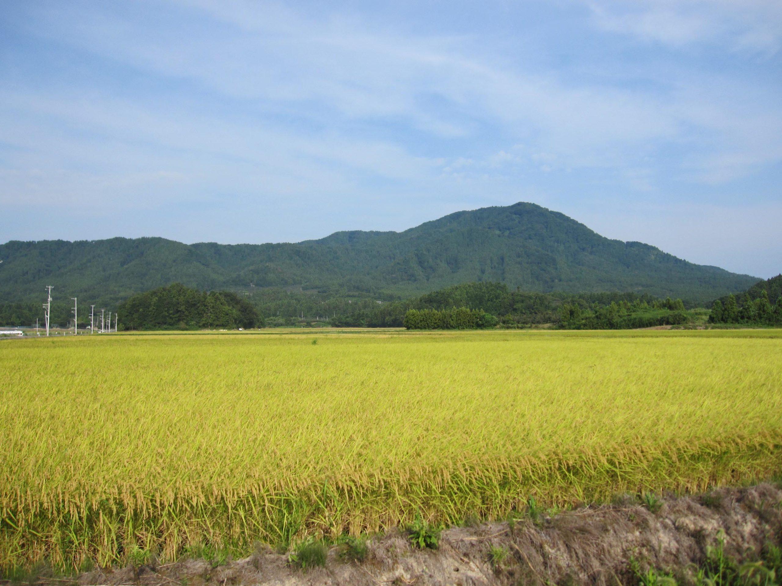 越後鶴亀から角田山を望む